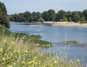 Saint-Firmin-Loire, le fleuve
