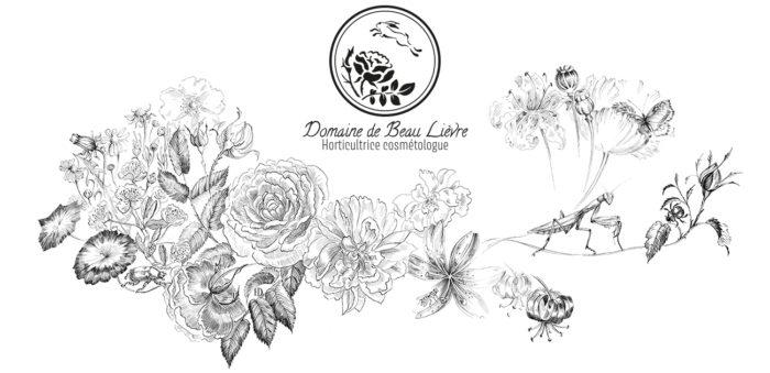 Logo Domaine de Beau-Lièvre