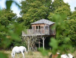 Batilly en Puisaye – Familly Ecolodge cabane perchée- 1 août 2018 – OT Terres de Loire et Canaux -IRémy (6)