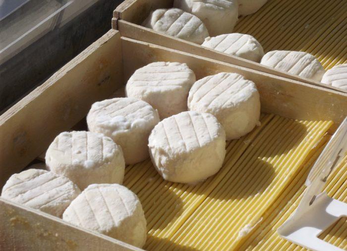 Beaulieu sur Loire – fromage de chèvre