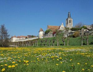 Bonny sur Loire 1er avril 2017 – OT Terres de Loire et Canaxu – IRémy (2)Bonny