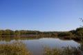 CHAMPOULET étang