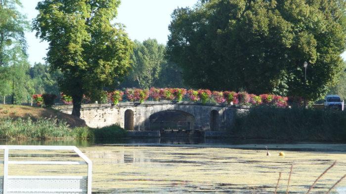 Châtillon sur Loire  mantelot – 10 septembre 2016 (44)