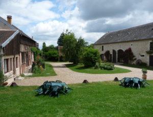 Beaulieu sur Loire-Domaine des Médards- vue générale –