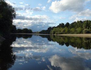 Nature – Loire – 9 août 2017 – OT Terres de Loire et Canaux – I.Rémy (2)