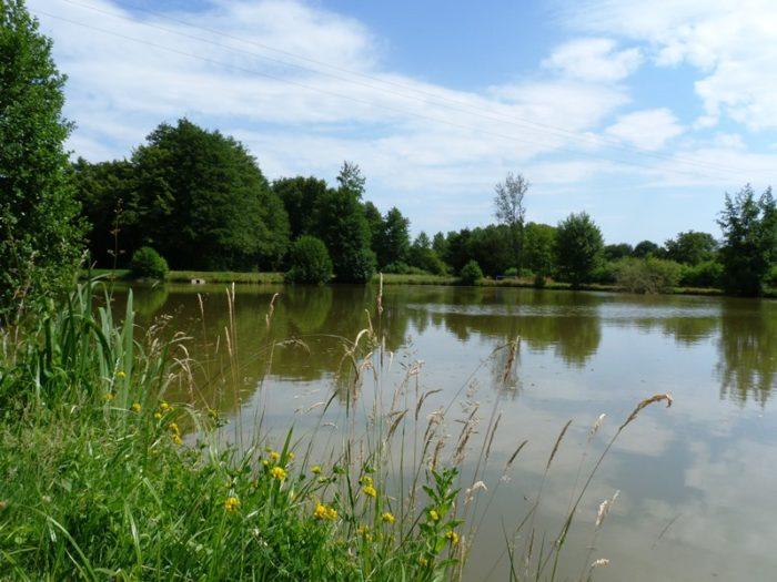 L'étang de Pierrefitte-es-bois