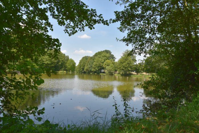 Pierrefitte es Bois – plan d'eau Notre Heure – 26 juillet 2018 – OT Terres de Loire et Canaux – IRémy (25)