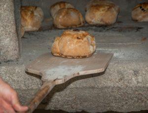 bread-2885963-1920