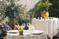 Ousson sur loire-Clos du vigneron – terrasse