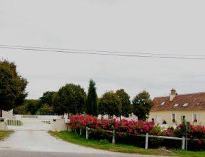 Dammarie en Puisaye-La Grande Gentillère-cour_de_la_ferme