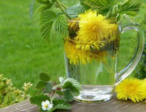 dandelion-2232626-1920-fleurs-comestibles