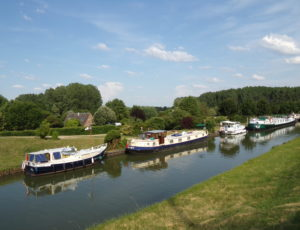 Beaulieu sur Loire – halte nautique – 11 juin 2015 (3)